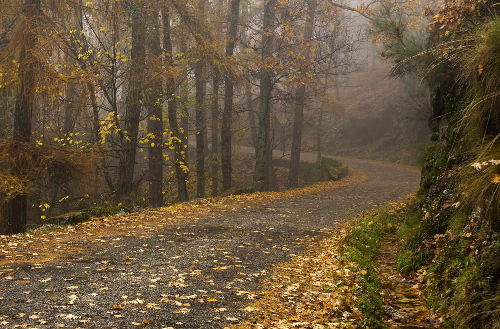 serraestrela outono manteigas nevoeiro caminho