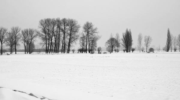 holanda ameide inverno neve