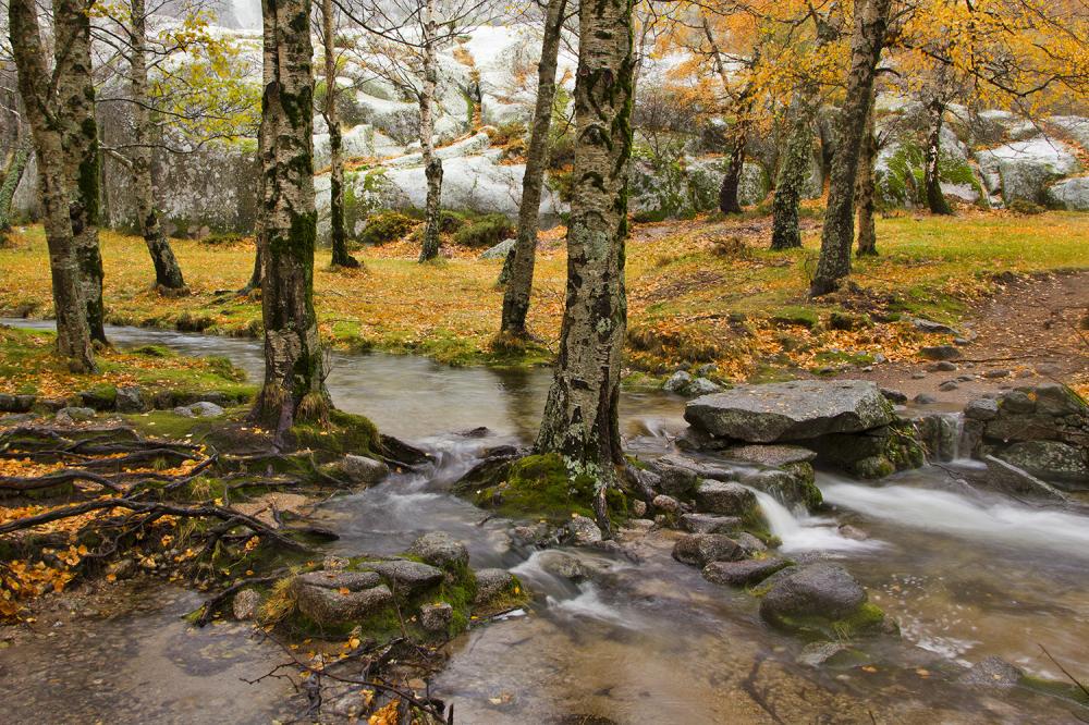 serraestrela outono covão-da-ametade