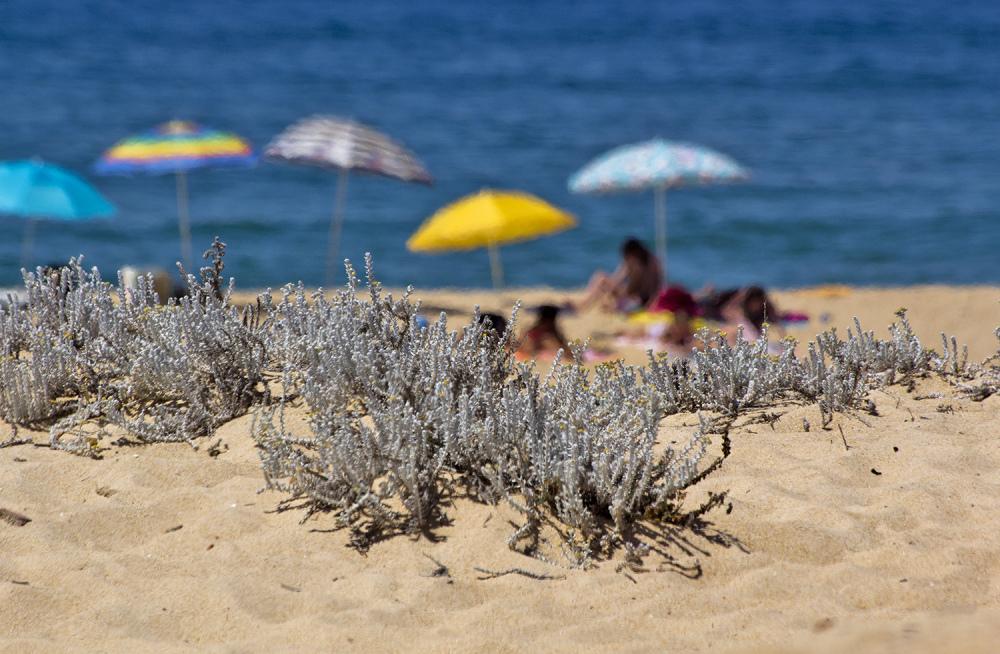 praia mar verão melides areia