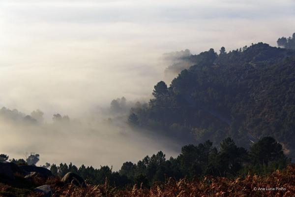 alvão nevoeiro outono