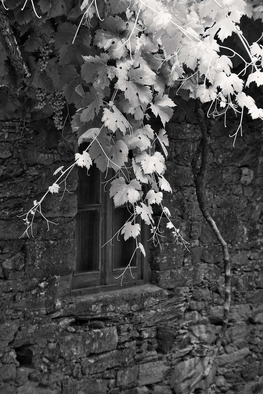 proença-a-nova janela portas-de rodã