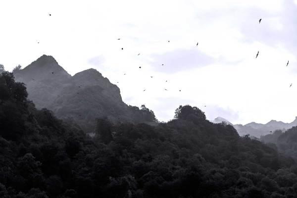 espanha picos-da-europa covadonga nevoeiro