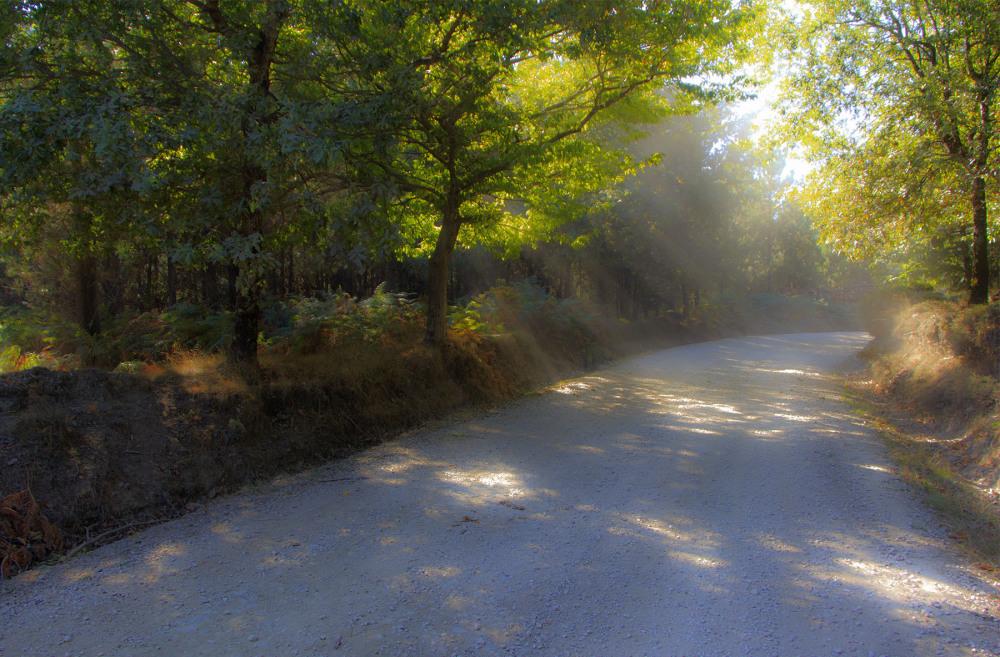 lousã outono sunrise caminho