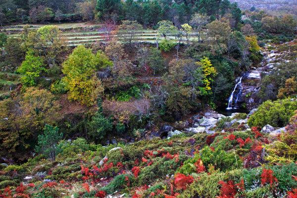 alvão  outono cascata