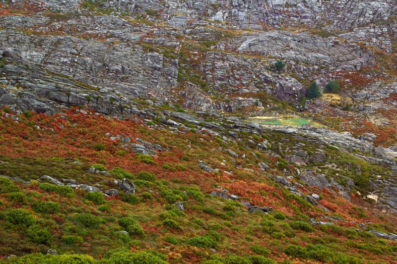 alvão outono montanha rocha
