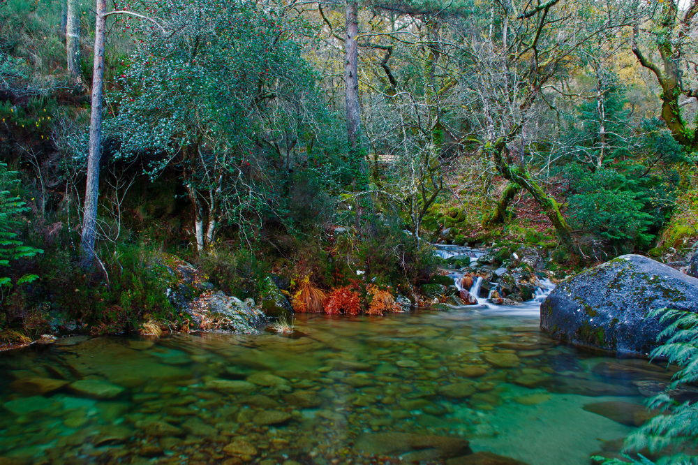 peneda-gerês mata-da-albergaria outono cascata