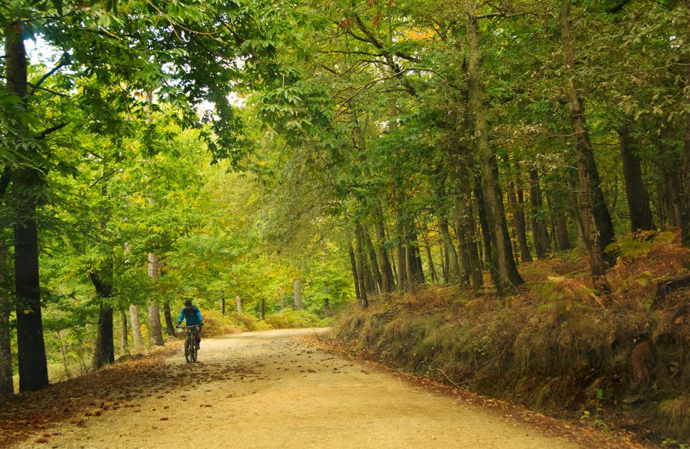 lousã  outono bicicleta