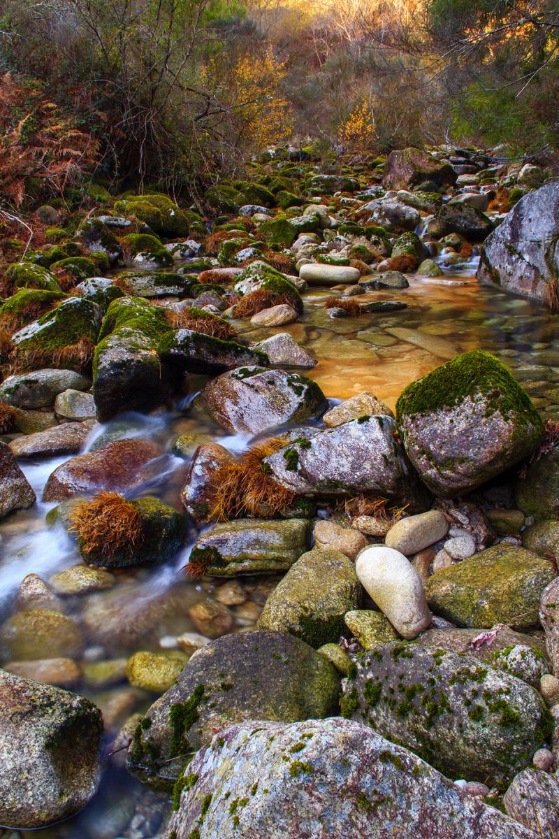 peneda-gerês soajo outono ponte-da-ladeira rio