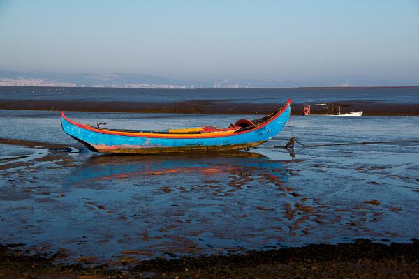 barcos rio tejo
