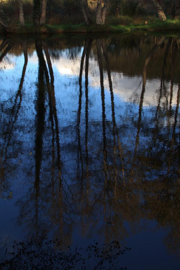 caramulo  outono reflexo