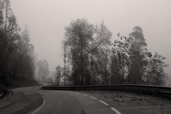 caminho coimbra nevoeiro