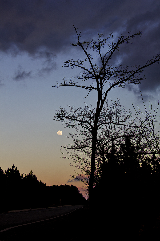 s-pedro-de-moel sunset lua