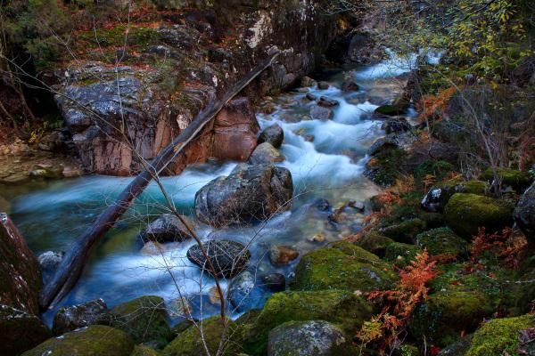 peneda-gerês mata-da-albergaria outono rio cascata