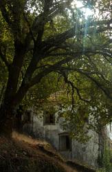 lousã  outono aldeia
