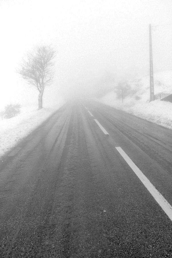 serraestrela inverno neve arvore caminho