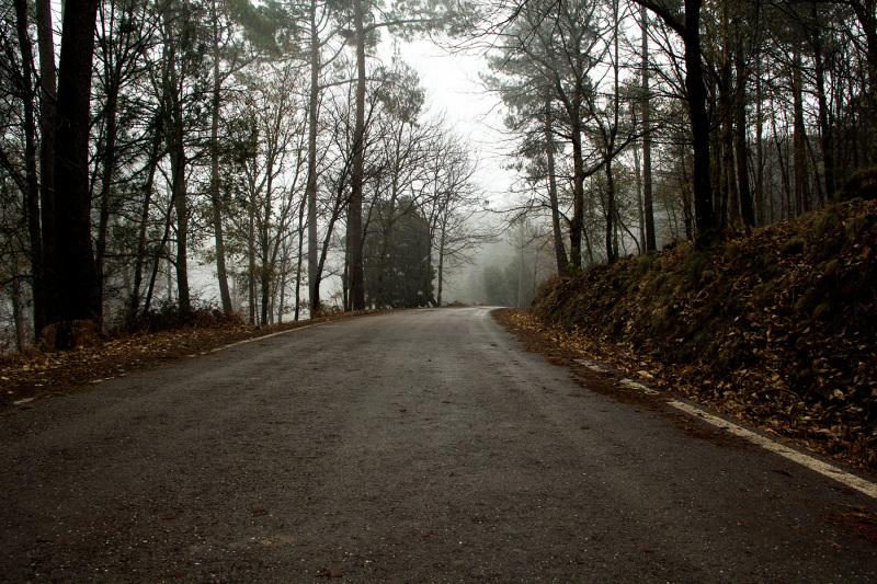lousã outono nevoeiro caminho