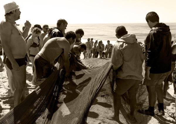 vieira arte-xávega pescador rede