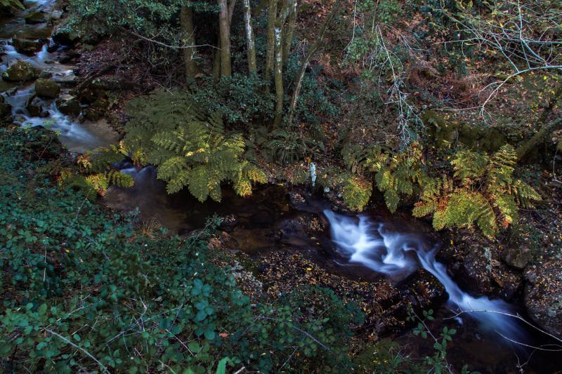 sicó cascata outono