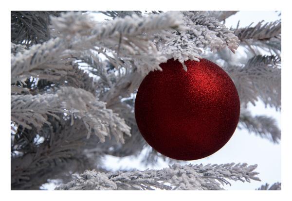 Christmas dreams in Colmar