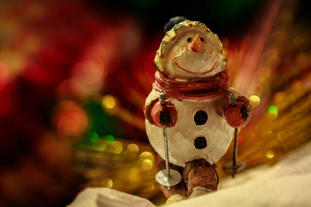 The snowman adventure I
