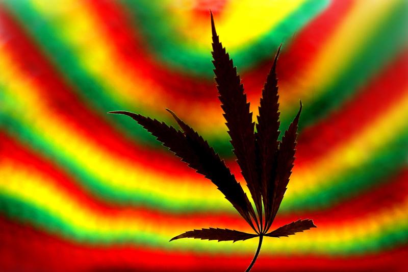 Cannabis and reggae