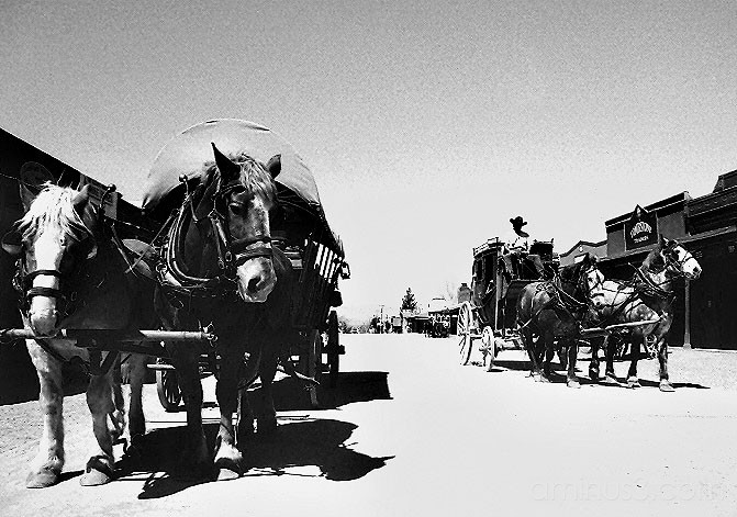 Stagecoach, Tombstone, Arizona