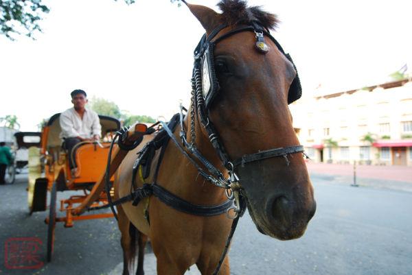 kalesa, fort santiago, manila, horse-drawn carriag