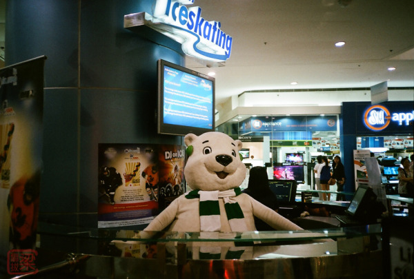 polar bear doll ice skating rink sm mall of asia