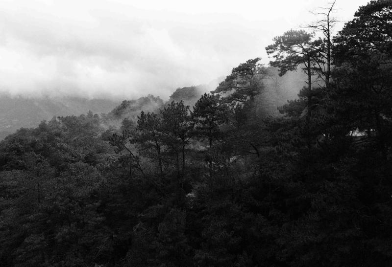 Mines View Park, Baguio City, Benguet, Philippines