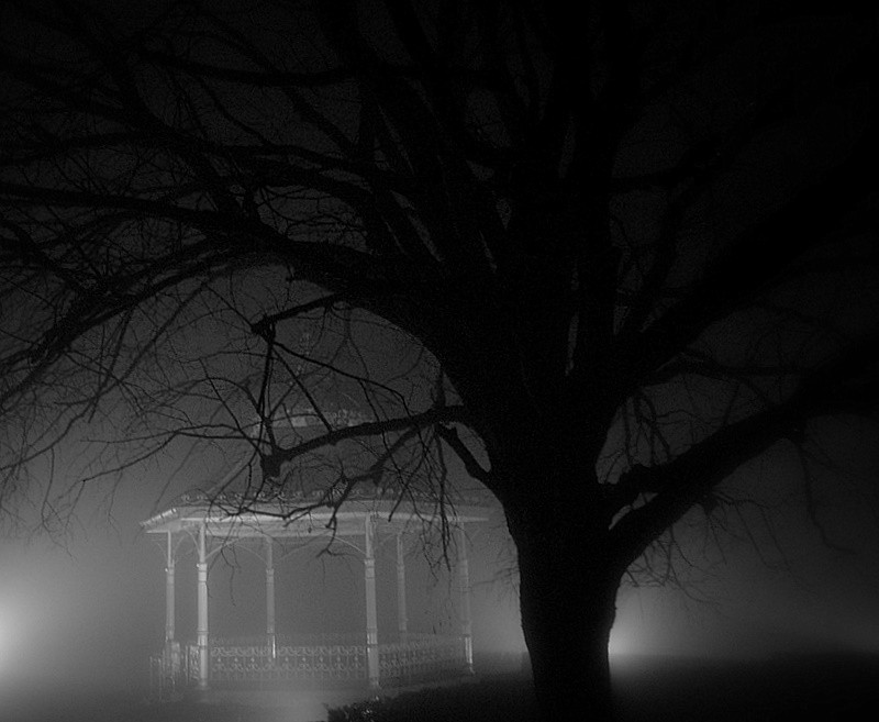foggy bandstand