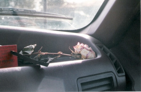 rose dashboard