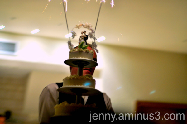 wedding cake [arctic roll]