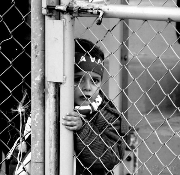 kid fence soccer