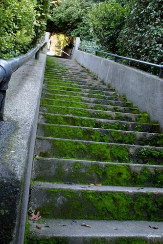 Karen's Stairs 2