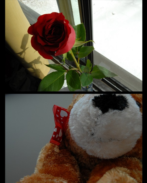 valentine's day presents