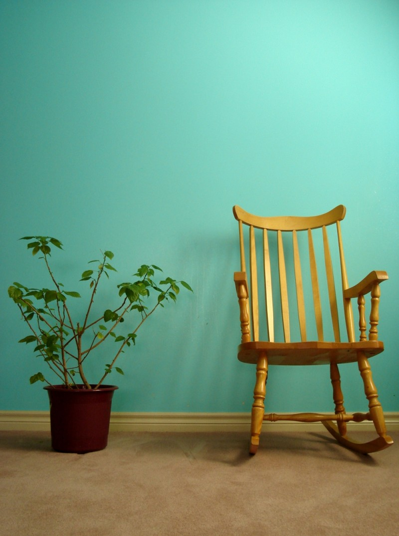 potted plant and rocking chair