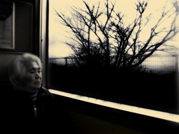train portrait japan japanese JR