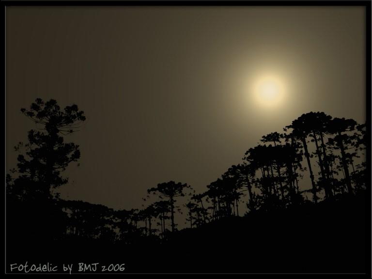Sun at Night