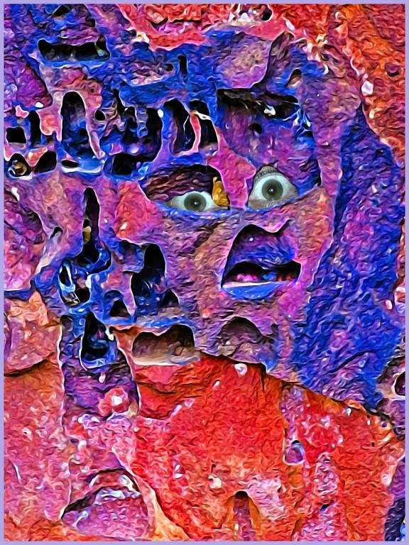 a face