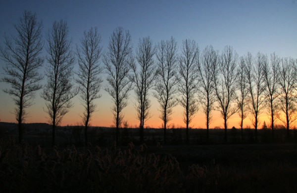 Levée du soleil - Sunrise