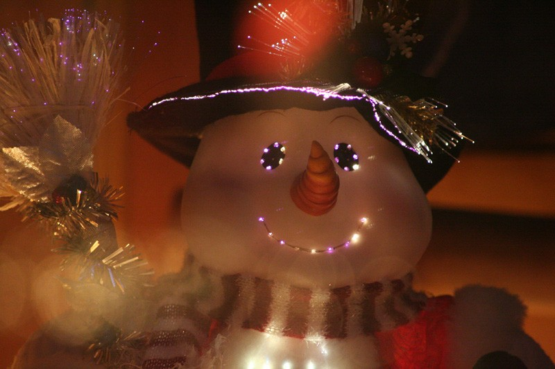 The optic fiber Snowman