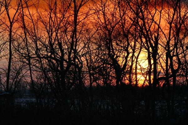 Sunset on St-Hubert, Québec, Canada