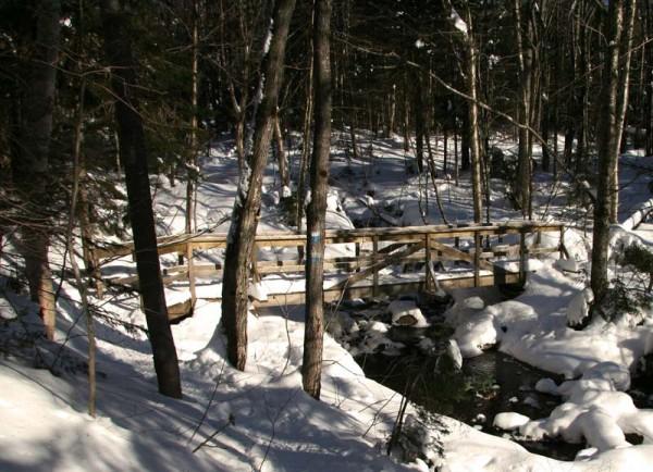Winter scene 2 - Scène d'hiver 2