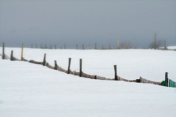 A few arpents of snow - Quelques arpents de neige