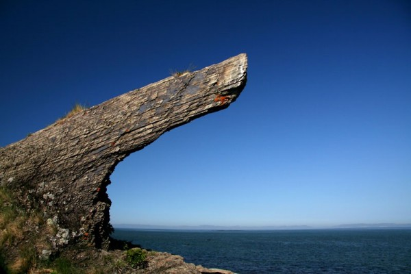 The whale's rock
