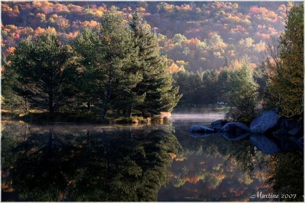 Quiet morning II - Matin tranquille II