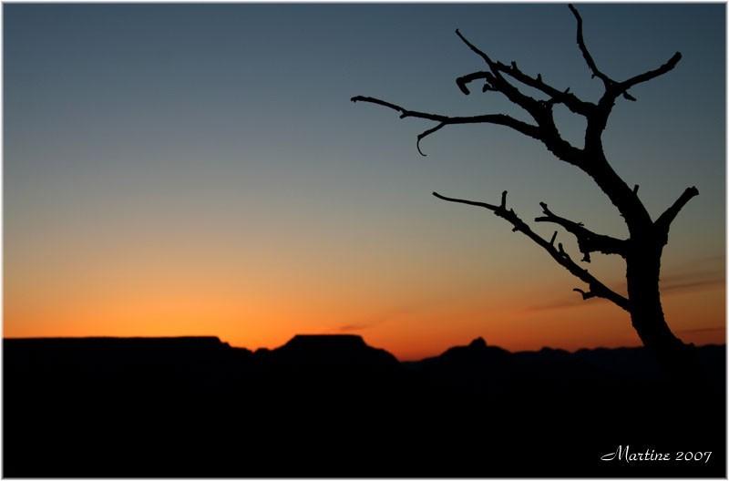 Sunrise - Levé du soleil