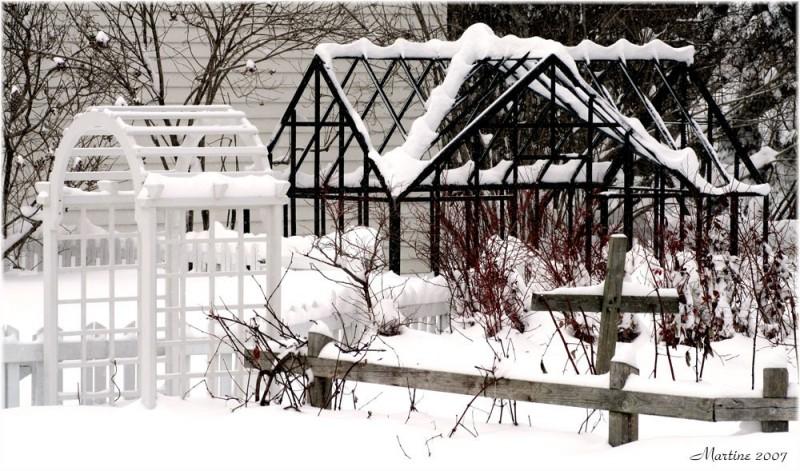 Winter garden - Jardin d'hiver