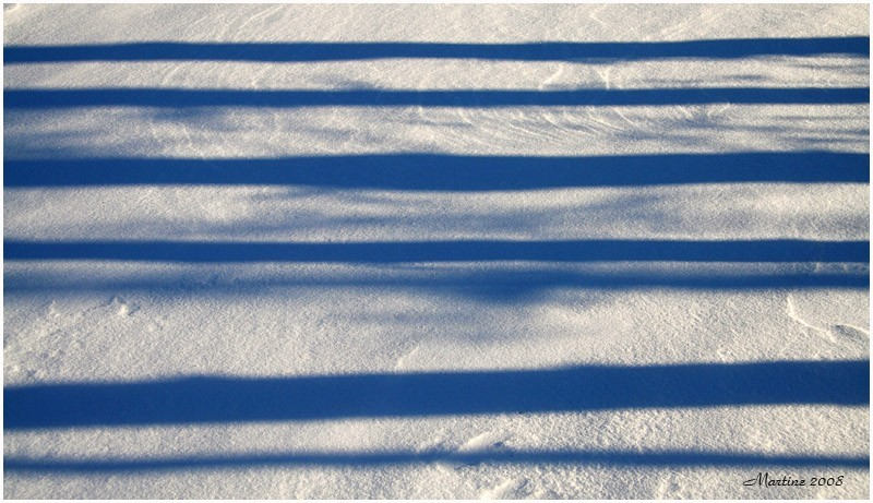 Shadows on snow - Ombres sur la neige